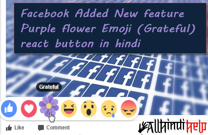 facebook-added-new-feature-purple-flower