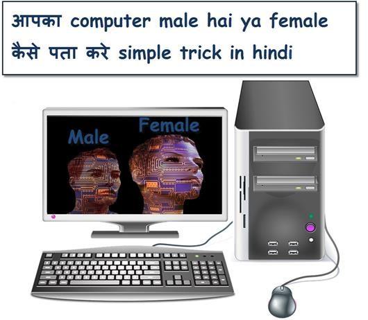 aapka computer male hai ya female kaise pata kare, how to know my computer male ya female in hindi-pcormoney.blogspot.com