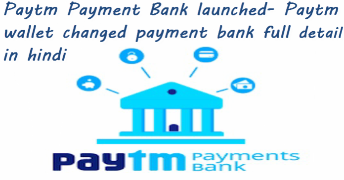 paytm payment bank launched paytm wallet changed payment bank full detail hindi