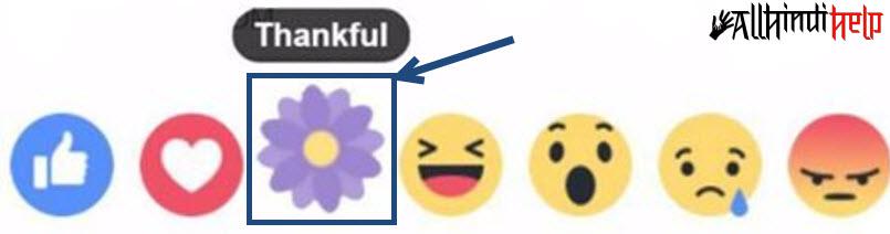 purple-flower-thankful-reaction