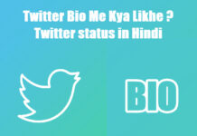 twitter bio me kya likhe twitter status in hindi