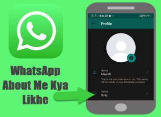whatsapp about me kya likhe whatsapp status and quotes in hindi