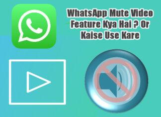 whatsapp mute video feature kya hai in hindi